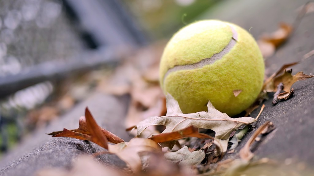 autumn-tennis-ball